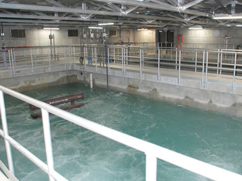 ALLEGANY WASTEWATER TREATMENT PLANT