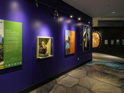 Seneca Iroquois Museum - Onohsagwe:de' Cultural Center, Allegany Territory, Salamanca, NY